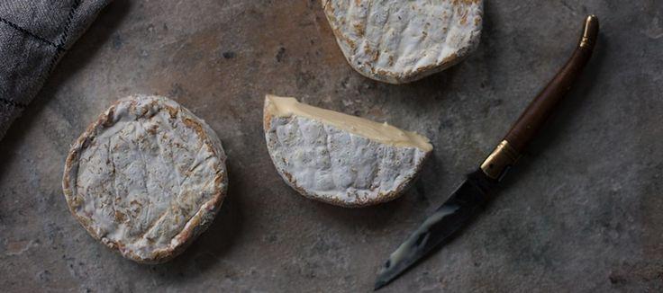 Bruny Island Cheese :: home