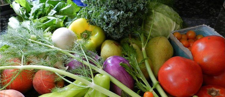 Vaak hoor je dat biologisch eten duurder is en dat klopt als je kijkt naar de supermarktprijs. Biologisch is voedzamer,gezonder en beter voor het milieu.