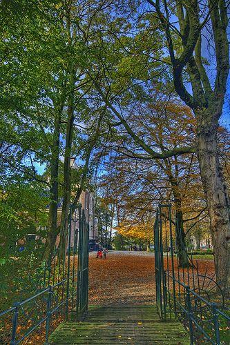 Park Frankendael Fall, Amsterdam, Netherlands