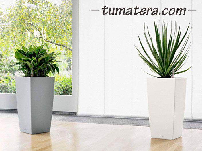 Encuentralas en: http://www.tumatera.co/products/matera-inteligente-15-mi-303056cubico/