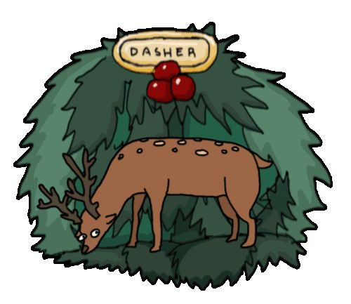 What do the female reindeer do when they want some fun? They go into town and blow a few bucks.