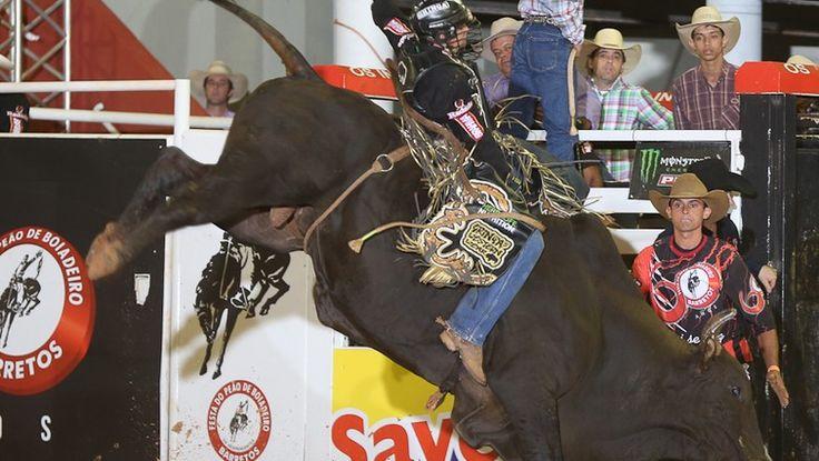 A modalidade pode ser praticada em diferentes tipos de touros, e exige dos peões uma preparação especial