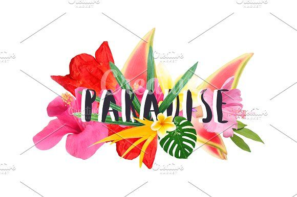 "Floral collage "" Paradise""  by Trefilova Anna on @creativemarket"