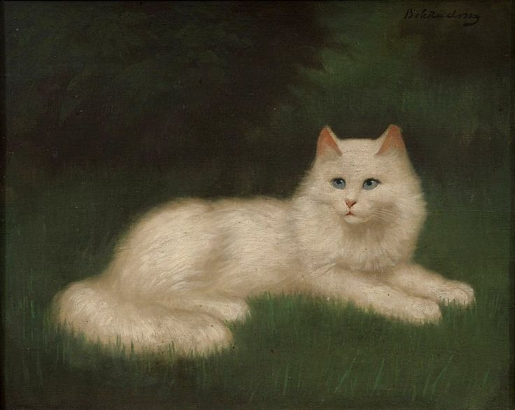 cats in art, persian cats, white cats