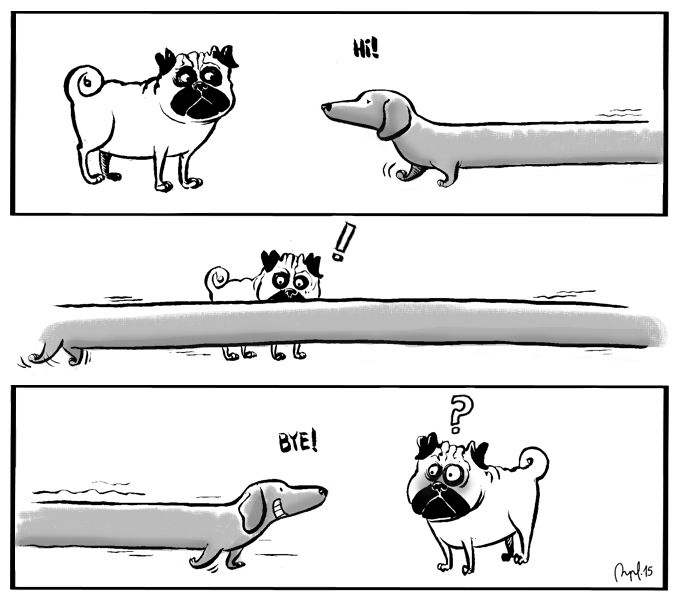 Perrus meets the palindromic Dachshund. (Published in Jot Down Magazine).