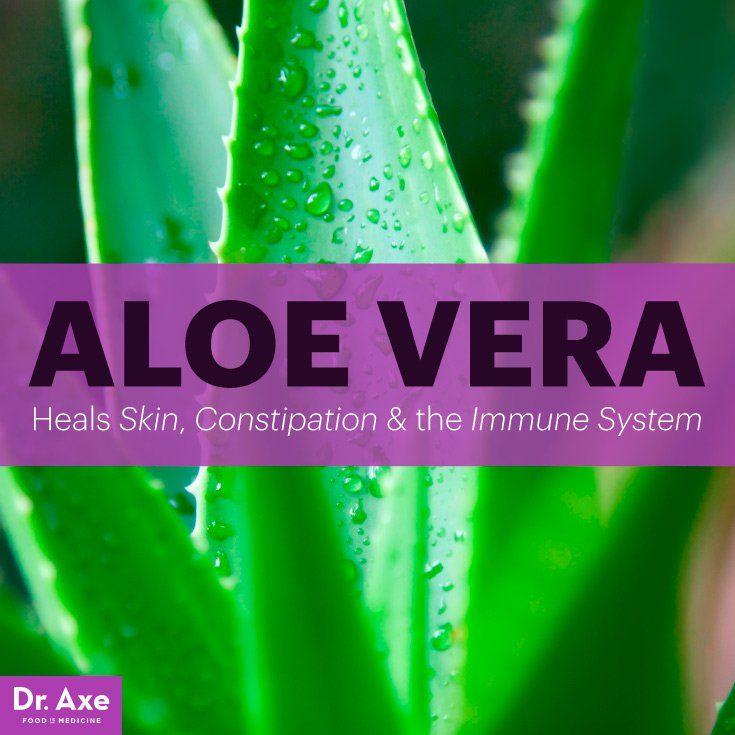 Aloe Vera Benefits: Healing Skin, Constipation & Immune System - Dr. Axe