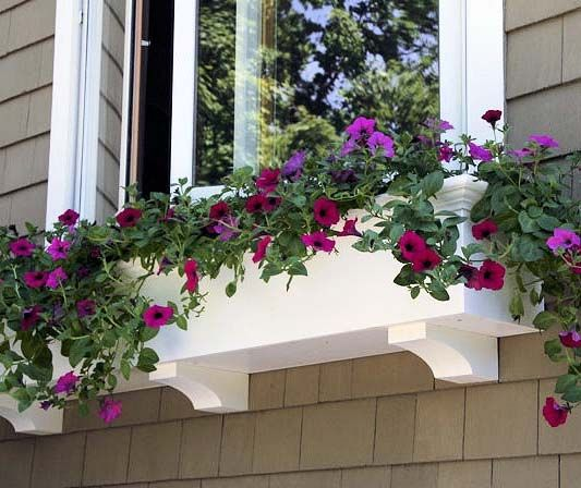 Lattice Rail Flower Box Is A Superb Addition To Decks: 17 Best Images About House Windows