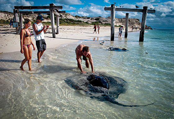 Hamelin Bay. Western Australia