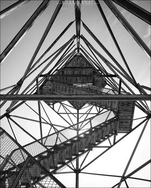trigg tower height