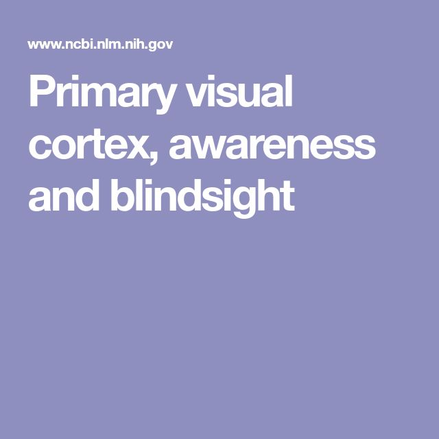 Primary visual cortex, awareness and blindsight