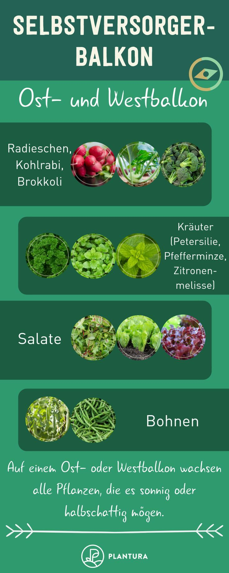 Selbstversorger-Balkon: Welche Pflanze für welchen Balkon