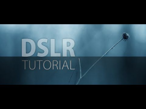 A tutorial by Fenchel & Janisch    Facebook: http://www.fb.com/FenchelJanisch  YouTube: http://www.youtube.com/FenchelJanisch2    This introduction to DSLR video is divided into six parts.  Learn how to set up your camera, shoot in daylight and at night.  This tutorial shows you how to get the cinematic film look that  so many people are talking about.  ...