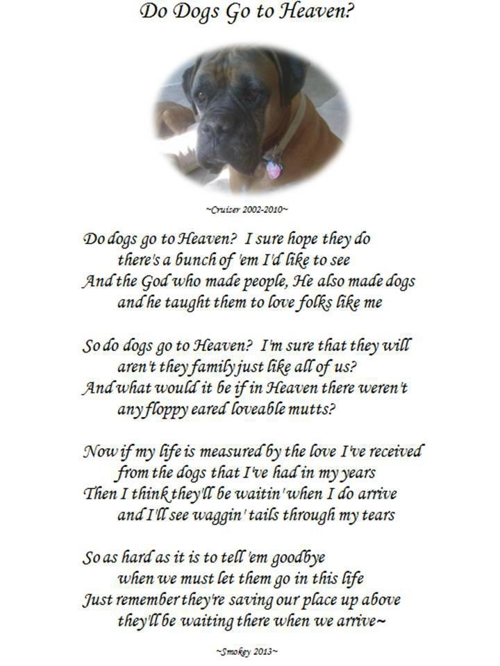 17 Best images about DOG HEAVEN AND PET LOSS on Pinterest ...