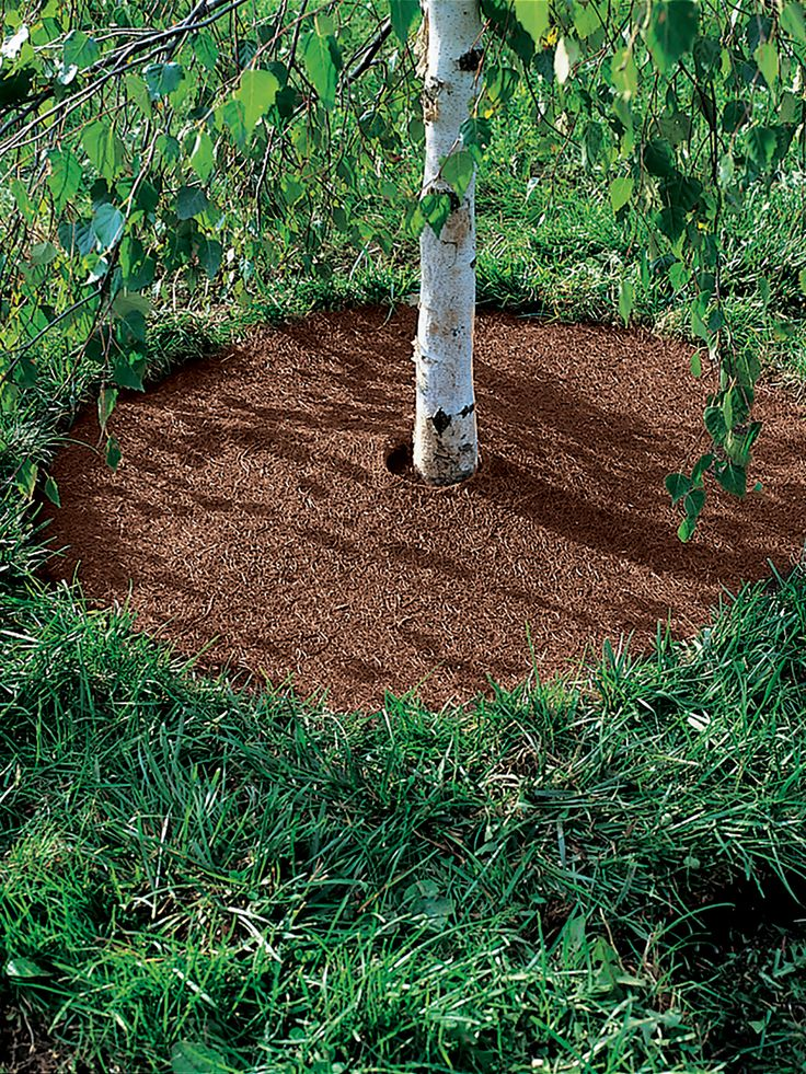 No Dig Garden Edging Easyflex™ Landscaping Edging With 640 x 480