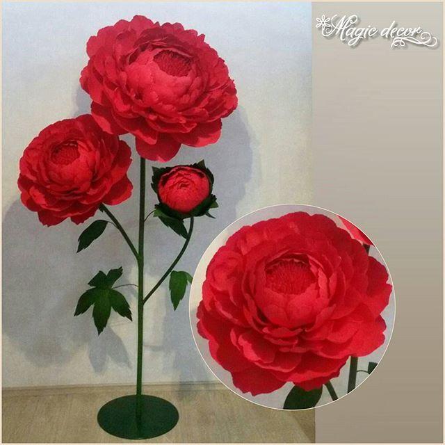 Новинка!!!🎉 Представляю Вашему вниманию шикарные красные цветы!... ______________________________________ #эксклюзив  #ростовыецветы #гигантскиецветы #пионы #свадьбаоренбург #декордляфотосессии #декорсвадьбы #бумажныйдекор #бумажныецветы #цветынасвадьбу #цветыоренбург #фотозона #декорациидляфотосессий  #праздникоренбург #оформлениепраздника #оформлениефотозоны #оформлениевитрин #выезднаярегистрация #декороренбург #свадьбаоренбург