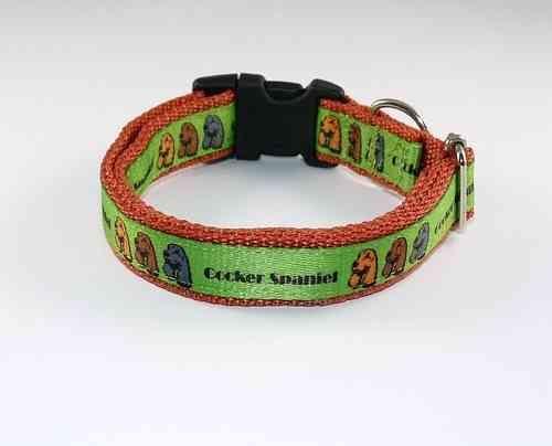 Halsband / dog collar