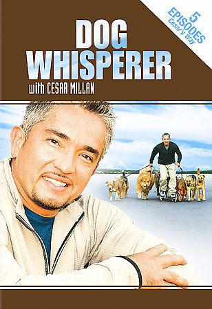 Dog Whisperer With Cesar Millan 5 Episodes (DVD, Television, Full Screen, New)