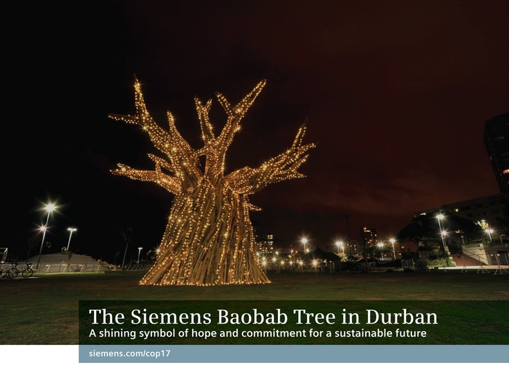 The siemens baobab tree in durban. A shining symbol for hope and commitment for a sustainable future.