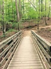 One of the bridges along the Lake Shore Trail at Lake Norman State Park. Lake Norman State Park, on the largest man made lake in North Carolina, boasts one of the region's more popular mountain biking network, offering 30.5 miles of single-track trail.