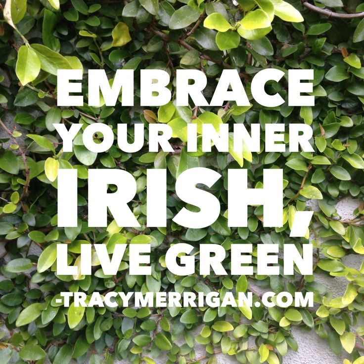 #StPatricksDay #LiveGreen we are all Irish, Made Me Smile #mms