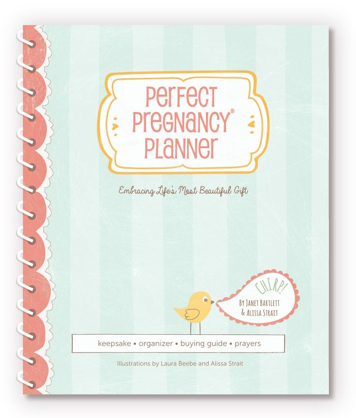Introducing the Perfect Pregnancy Planner! The perfect resource for every mom-to-be!