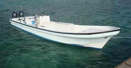 Twin Engine Panga | Boats | Pinterest | Engine and Boating