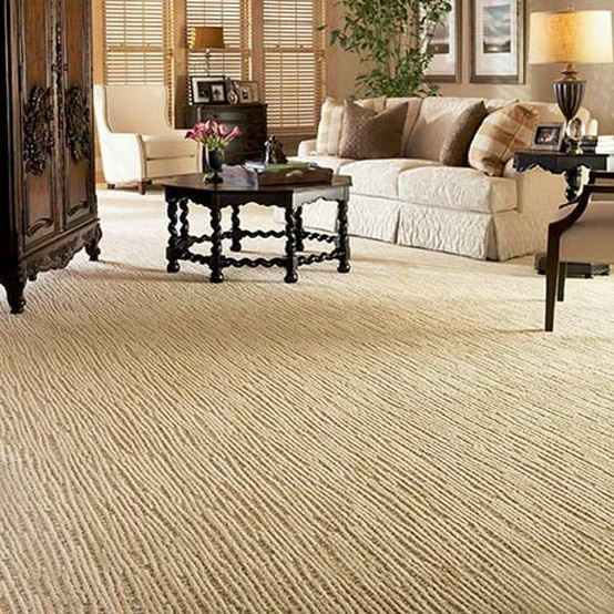 Slug Trail On Living Room Carpet: 17 Best Images About Fabrica Carpets And Area Rugs On