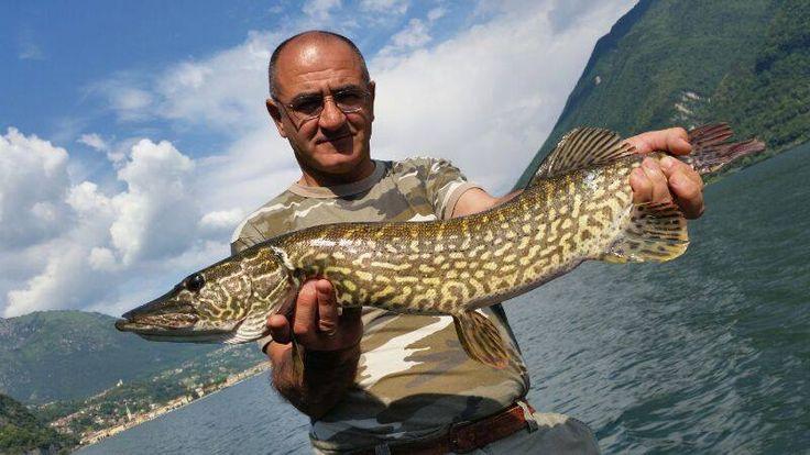 Spinning al Lago di Lugano - Fishingmania.it