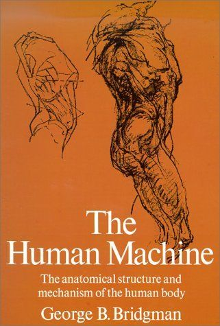 "The Human Machine (Dover Anatomy for Artists) by George B. Bridgman. $8.95. http://www.letrasdecanciones365.com/detailp/dpewd/0e4w8d6x2r2d7j0r7m3q.html. Each section of body from skeletal level through adding muscles to ""life"" form. Over 400 illustrations.                                                                 Show More                                    Show Less                    #outer_postBodyPS {        display: none..."