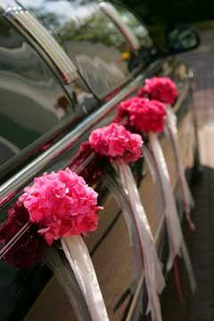 Wedding Transportation  & Luxury Wedding Car Rentals
