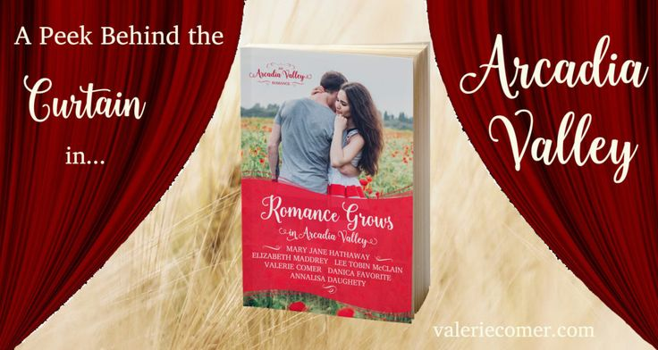 The germ of the idea that became Arcadia Valley Romance began percolating for me in the summer of 2014. Yes, that long ago! Shortly after I began publishing my work independently, the still-new con…