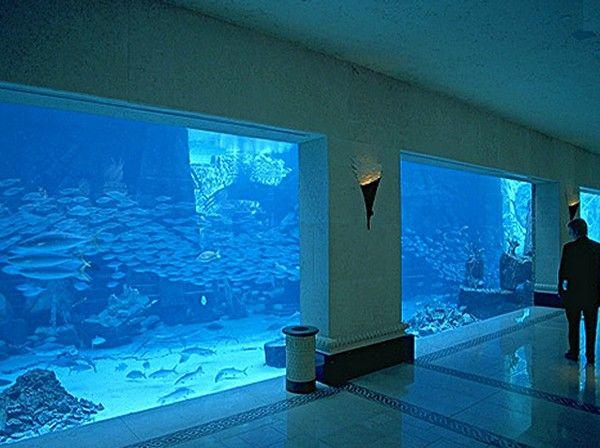 The AMAZING Atlantis Lobby Aquarium, Nassau, Bahamas - they even had manta rays swimming in it!