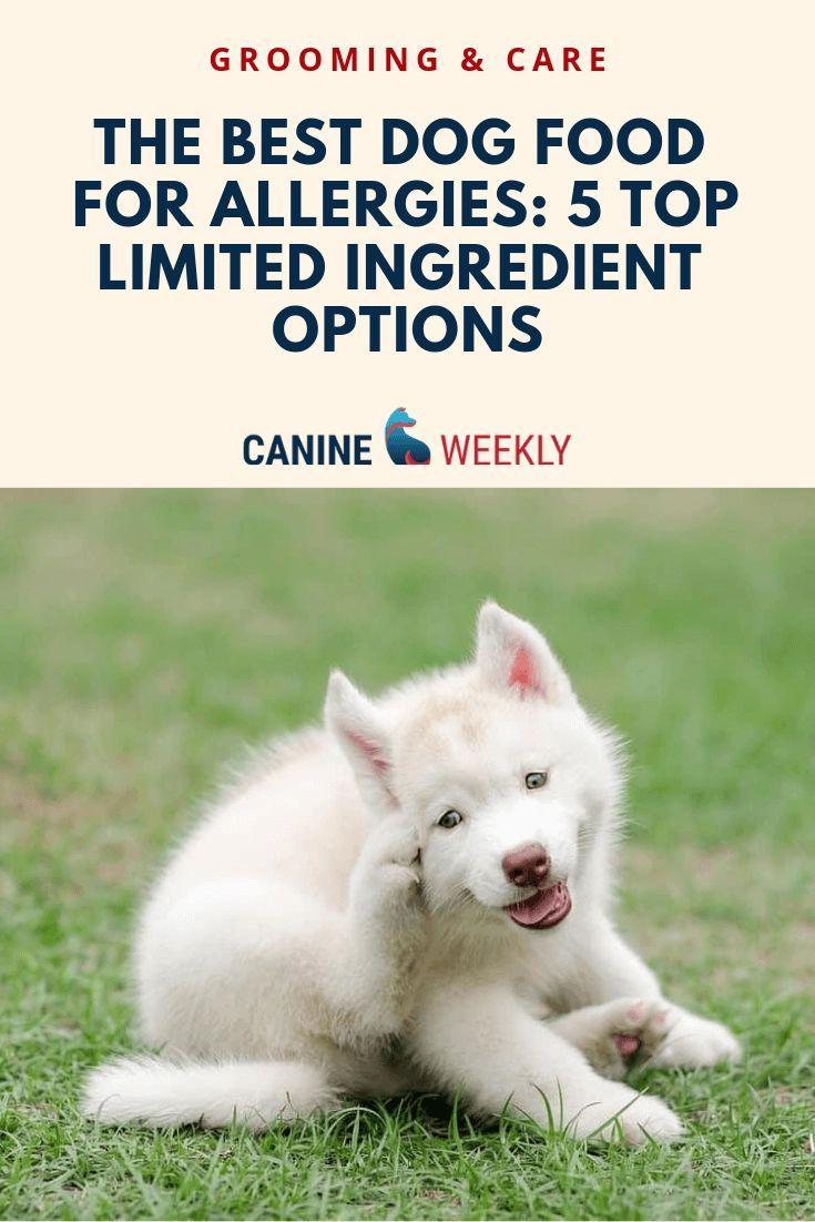 7 Best Hypoallergenic Dog Food For Allergies 2020 Hypoallergenic