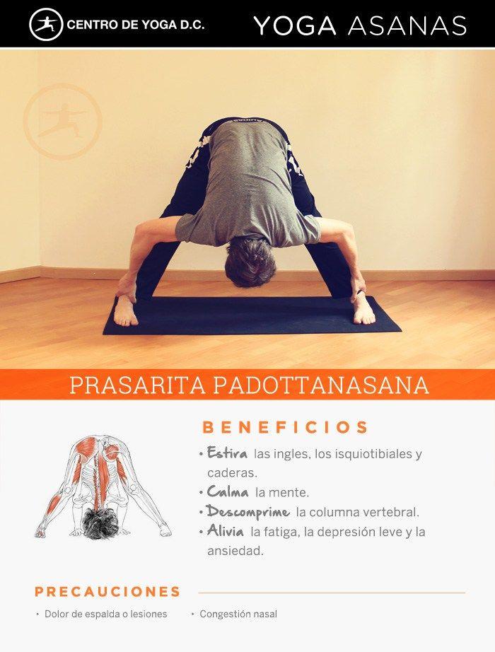 Beneficios de la práctica de Yoga · PRASARITA PADOTTANASANA por Diego Cano