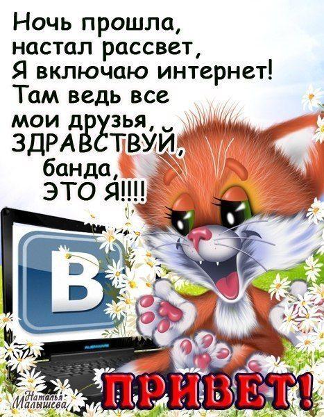 смешные картинки с надписями доброе утро: 16 тыс изображений найдено в Яндекс.Картинках