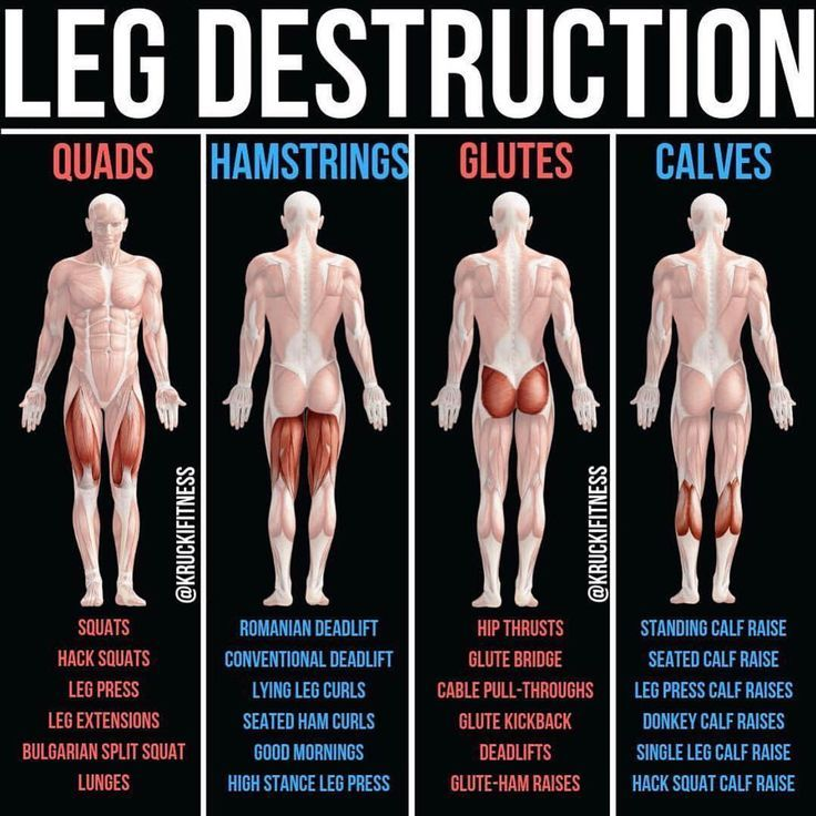 Build Bulging Bigger Legs Fast With This Workout -…