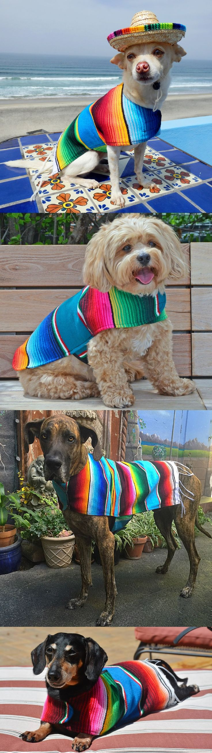 Our handmade dog ponchos are the perfect Halloween costume for your furry friend.  Use promo code:  PUMPKIN20 and save 20% off your order!