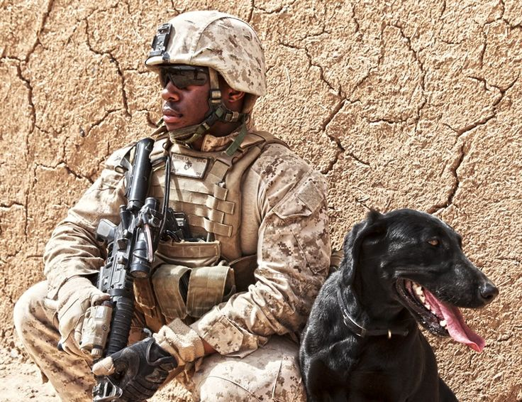 Lance Cpl. Thomas Foster takes a rest with his military working dog Diamond during a patrol through Boldak, Afghanistan March 6. Foster is a member of Weapons Company, 2nd Battalion, 7th Marine Regiment.
