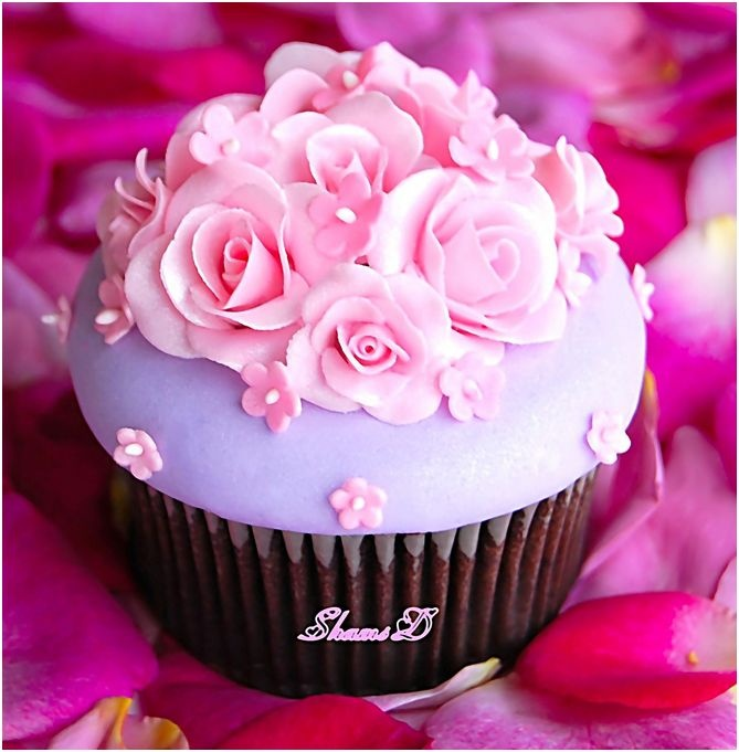 747 best Elegant Cupcakes images on Pinterest
