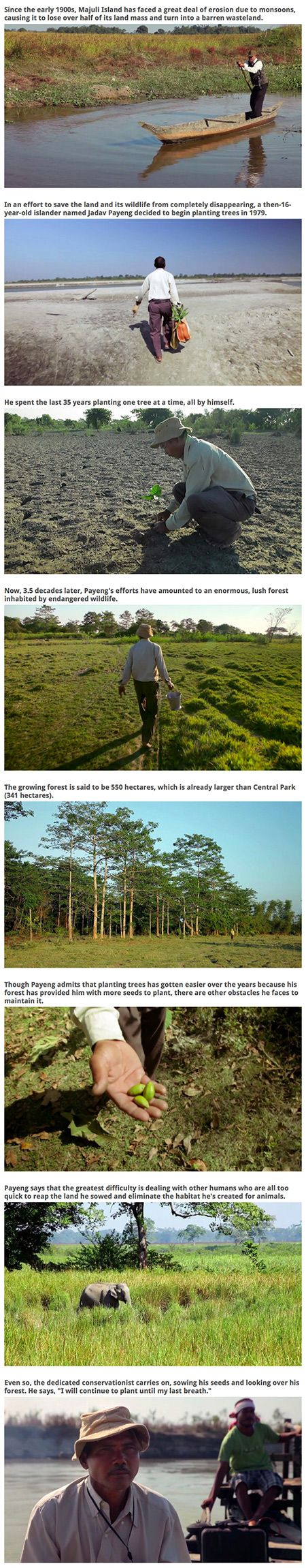 A man named Jadav Payeng single-handedly built a forest on Majuli Island, located in Northeast India, one tree at a time.