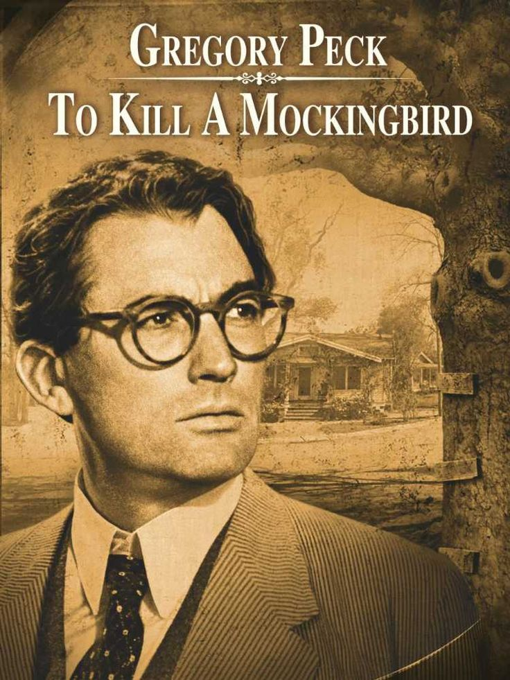 an analysis of social inequalities in to kill a mockingbird a novel by harper lee The main themes of the book to kill a mockingbird by harper lee, including  to  kill a mockingbird is narrated from the viewpoint of scout, a young girl of about   but to analyze and discover the truth for themselves, without forcing his own.