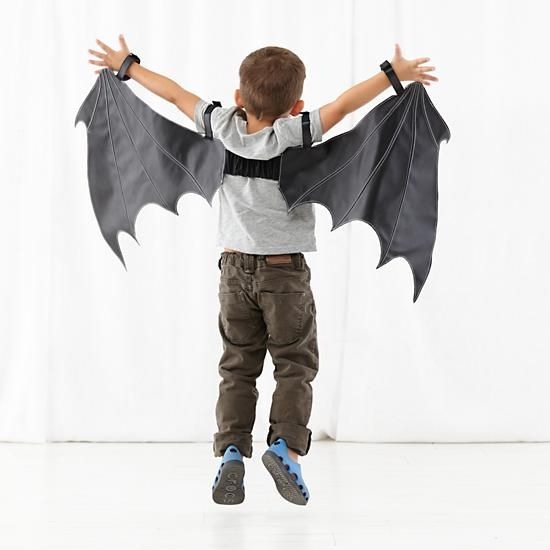 Bat Wings Dress Up | The Land of Nod