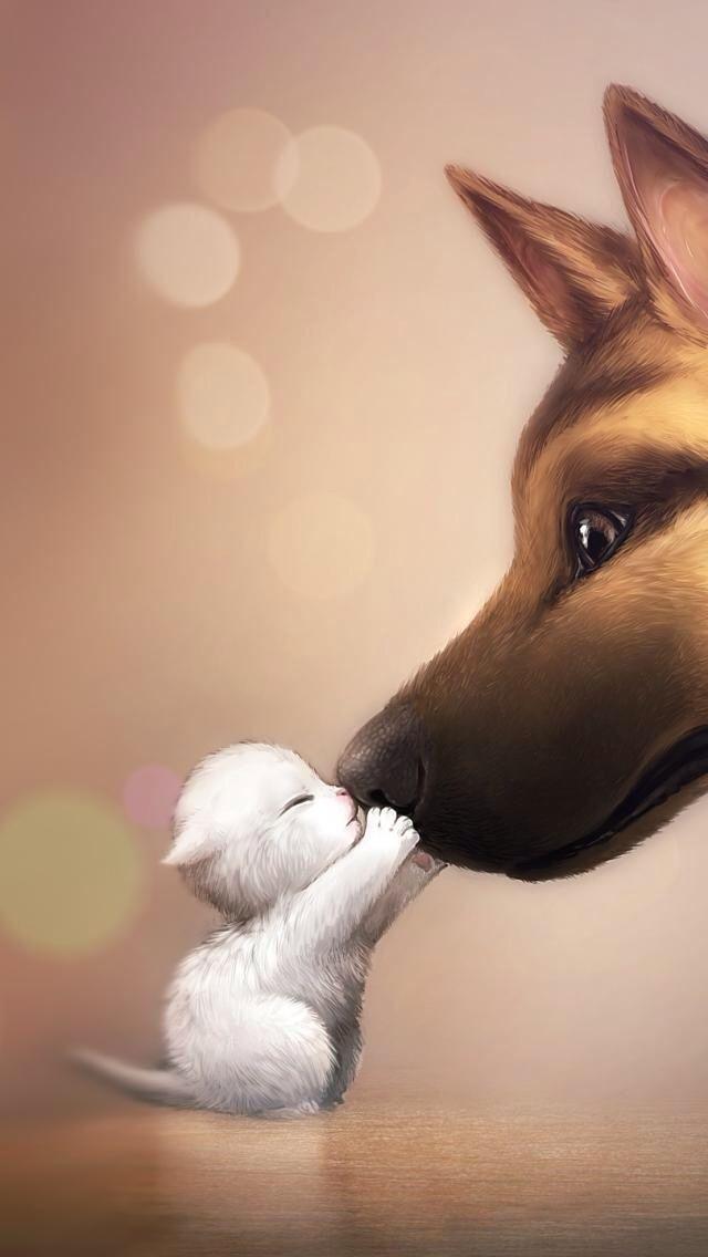 Niedliche #kleine #Katze #und #Hundezeichnung!