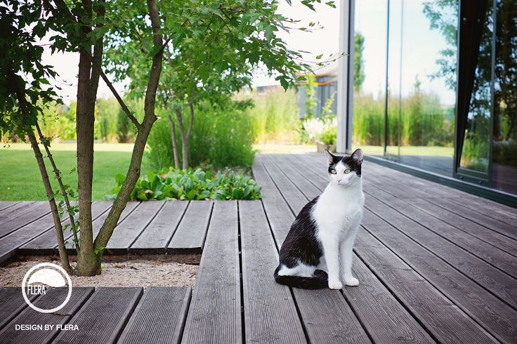 Nymburk, zahrada s kočkou | Atelier Flera