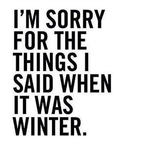 I am sorry for the things I said when it was winter