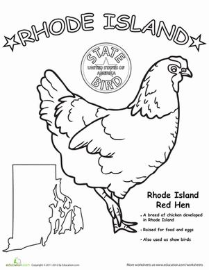 21 best Chickens Theme Unit Homeschool images on Pinterest