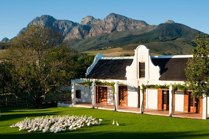 Babylonstoren - organic farm getaway in South Africa. You can sleep, you can run, you can spa. Guests are also invited to join in the harvesting, pruning, planting or picking of the many fruits, herbs, nuts, spices and ve