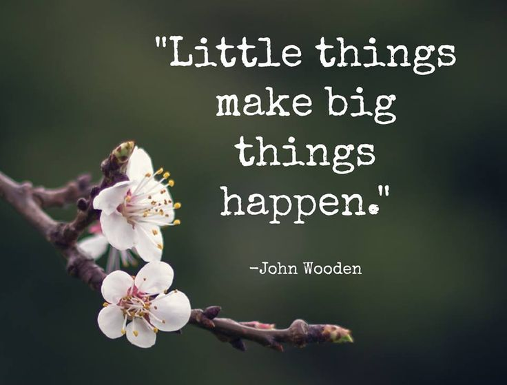 """Little things make big things happen."" - John Wooden"