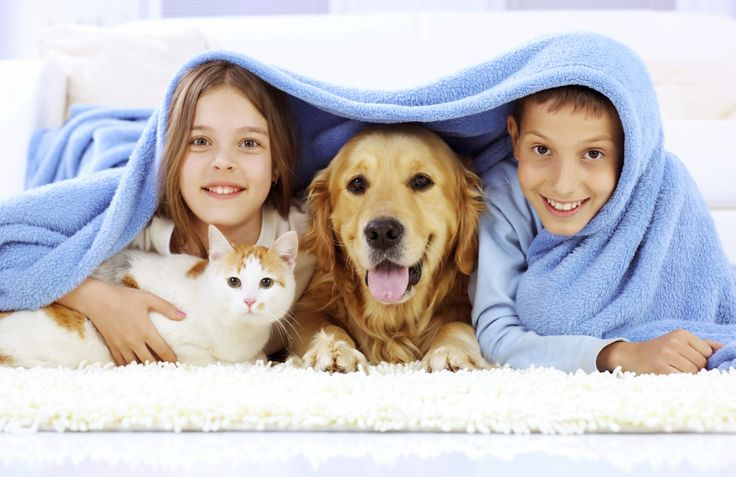A pet is the only thing on Earth, that loves you more than it loves Itself.    #PetHealth #Petcare Img Src : wellnesslabinfo.blogspot.com