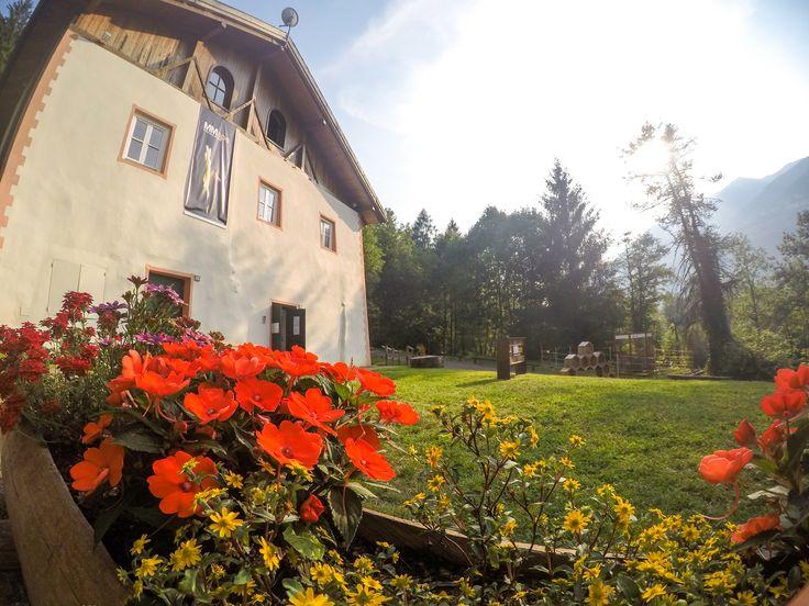 Un #giardino di #fiori colorati vi accolgono in #ValdiSole al #MMape! Immerso in un #parco, area protetta SIC (Sito di Interesse Comune) in #Trentino il Mulino #Museo dell'ape è un vero e proprio luogo da visitare e da #vivere. Aree #picnic in mezzo alla #natura incontaminata e percorsi nel #bosco oltre al #biolago, lo #stagno e le aree #relax sul percorso nella zona #botanica. Questo è #TrentinoNatura, #TrentinoFamily, #GuestCard, #OutdoorTrentino, #TrentinoWow!